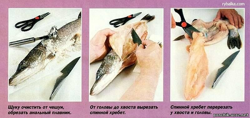 Рецепты приготовления щуки пошагово