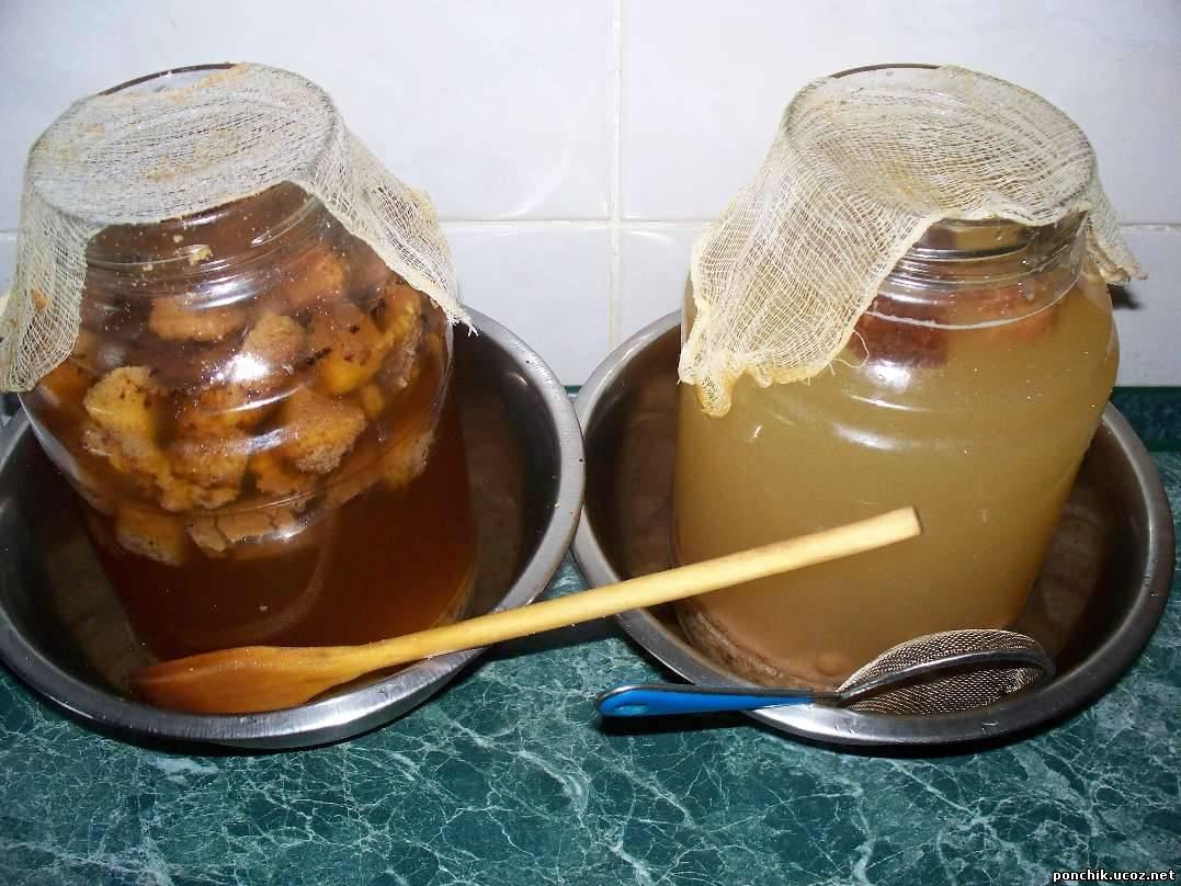 Домашние рецепты кваса : русский квас и его приготовление