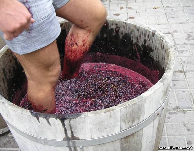 Как сделать вино из винограда в домашних условиях простой рецепт с фото
